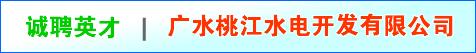 广水桃江水电开发有限公司